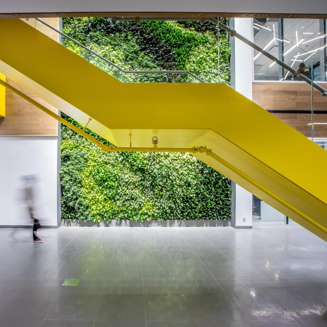 The lobby of HealthHub's R&D Innovation office with greenery wall and yellow staircase